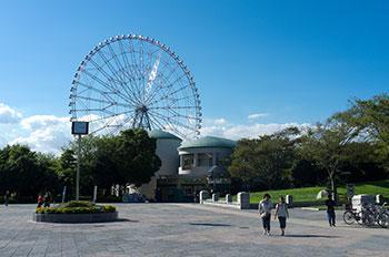 Diamond and Flower Ferris Wheel3