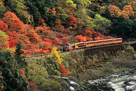sagano-railway4